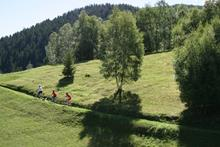 Escursione in Mountainbike AltaValtellina