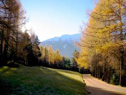 Click to view album: Le Acque Termali di Bormio